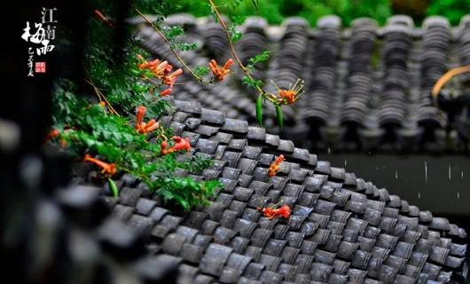 梅雨季节家居防潮怎么做